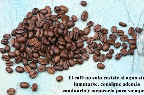 Granos de café en una mesa. Personas tipo café.