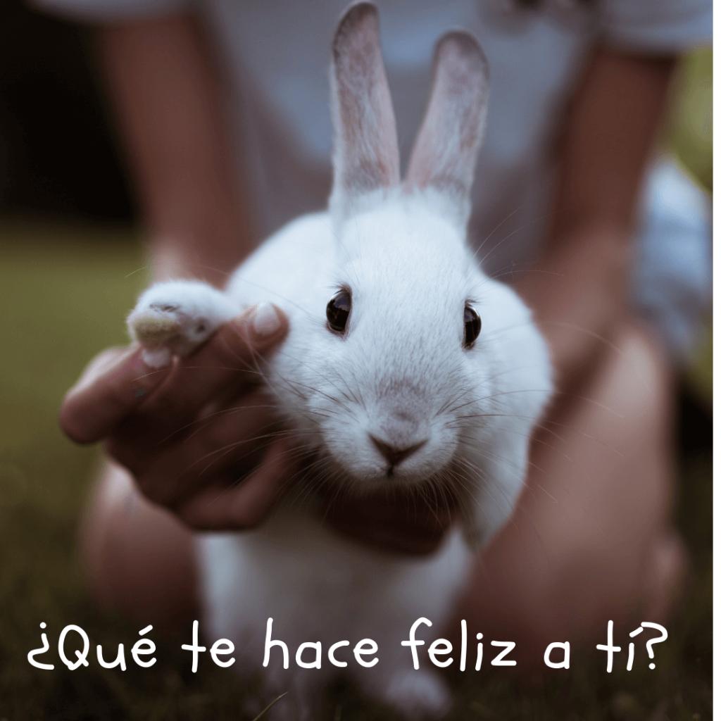"""Conejo blanco preguntando """"Qué te hace feliz a tí?"""""""